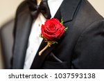 groom on wedding day  getting... | Shutterstock . vector #1037593138