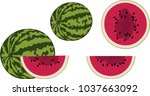fresh and juicy whole...   Shutterstock .eps vector #1037663092