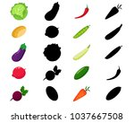 find the correct shadow ... | Shutterstock .eps vector #1037667508