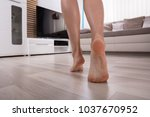 low section view of an foot... | Shutterstock . vector #1037670952