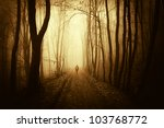 Man Walking On A Forest Road A...