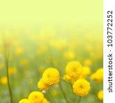 Stock photo flower background 103772252