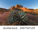 sedona  arizona usa jan 2018 ... | Shutterstock . vector #1037767135