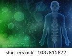 3d illustration human vertebral ... | Shutterstock . vector #1037815822