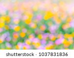 colorful bokeh for background... | Shutterstock . vector #1037831836