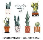 watercolor cacti in decorative... | Shutterstock . vector #1037896552