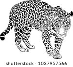 black and white vector sketch... | Shutterstock .eps vector #1037957566
