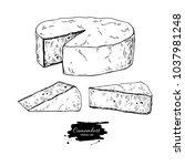 camembert cheese block and... | Shutterstock . vector #1037981248