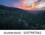 mystical sunset over the...   Shutterstock . vector #1037987062