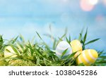 colorfully painted easter eggs | Shutterstock . vector #1038045286
