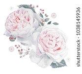 watercolor pink roses... | Shutterstock . vector #1038145936
