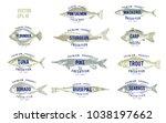 hand drawn illustrations of...   Shutterstock .eps vector #1038197662