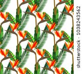 exotic seamless hand drawn...   Shutterstock .eps vector #1038243562