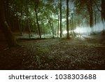 dark magical forest. nature... | Shutterstock . vector #1038303688