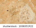 texture of old moldy paper with ... | Shutterstock . vector #1038351922