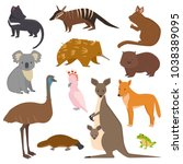 australian wild vector animals... | Shutterstock .eps vector #1038389095