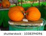 pick the pumpkin | Shutterstock . vector #1038394096