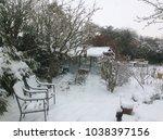 Landscape Of Garden Encased In...