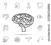 thin line brain icon. detailed... | Shutterstock .eps vector #1038426886