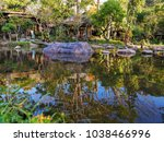 shadow of tree reflection in... | Shutterstock . vector #1038466996
