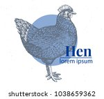 vector hand drawn chicken... | Shutterstock .eps vector #1038659362