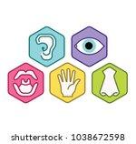 icon set of five human senses... | Shutterstock .eps vector #1038672598