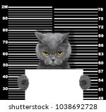 bad cat at the police station.... | Shutterstock . vector #1038692728
