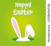easter rabbit  easter bunny | Shutterstock .eps vector #1038696538