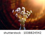 bouquet of camomiles in a vase  ... | Shutterstock . vector #1038824542