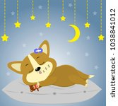 a cute corgi puppy is sleeping... | Shutterstock . vector #1038841012