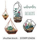 watercolor succulents on white... | Shutterstock . vector #1038910606