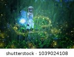 image of magical little fairy... | Shutterstock . vector #1039024108