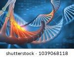 dna. 3d illustration decoding... | Shutterstock . vector #1039068118