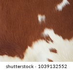 fur of the cow natural material | Shutterstock . vector #1039132552