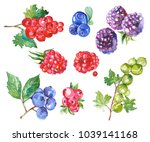 watercolor painted collection... | Shutterstock .eps vector #1039141168