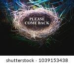 Bird\'s Cozy Nest  In The...