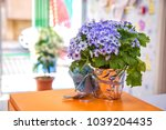 purple ribbon flower .... | Shutterstock . vector #1039204435