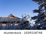 silver buddhism temple | Shutterstock . vector #1039218748