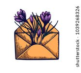 crocus hand drawn isolated... | Shutterstock .eps vector #1039268326