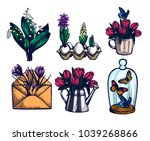 crocus  tulips  hyacinth  lily... | Shutterstock .eps vector #1039268866