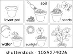 coloring page. instructions on... | Shutterstock .eps vector #1039274026