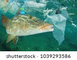 environmental problem   plastic ... | Shutterstock . vector #1039293586