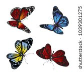 Stock vector collection of colorful butterflies vector 1039301275
