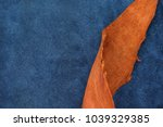 close up orange rough edge and... | Shutterstock . vector #1039329385