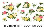 Stock vector big set of pink yellow white roses bouquets flowers and buds 1039436038