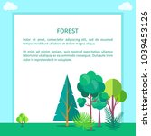 forest banner with pines  green ... | Shutterstock .eps vector #1039453126
