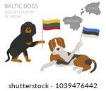 dogs by country of origin.... | Shutterstock .eps vector #1039476442