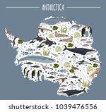 antarctic  antarctica   flora... | Shutterstock .eps vector #1039476556