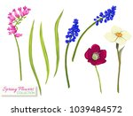 set of spring flowers. colorful ... | Shutterstock .eps vector #1039484572