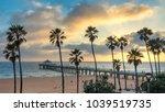 Palm Trees On Manhattan Beach...